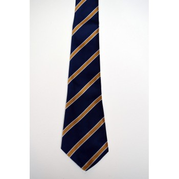 Robinson College Striped Tie.