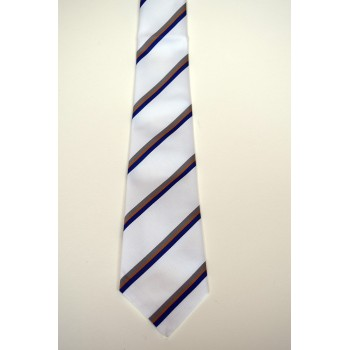 Robinson College Summer Striped Tie.