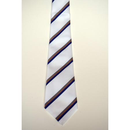 Robinson College Summer Striped Tie.