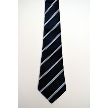 St. Edmund's College Striped Tie.