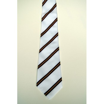 Selwyn College Summer Striped Tie.