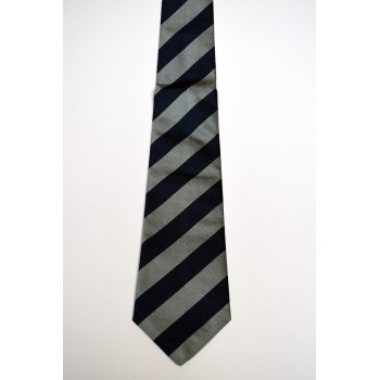 Trinity College Turtles Striped Tie.