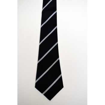 Trinity Hall Striped Tie.