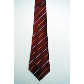 Wolfson College Striped Tie.