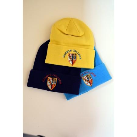 Darwin Beanie Hat