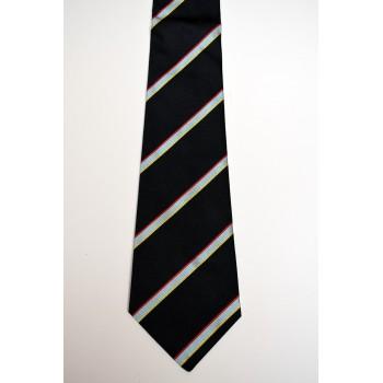 Darwin College Striped Tie