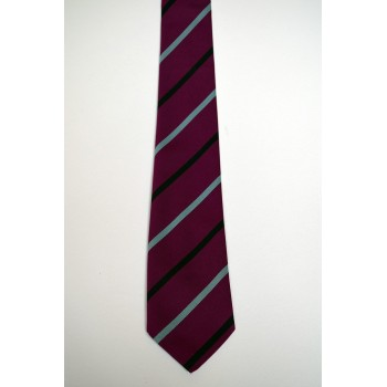 Downing College Rugby Tie.