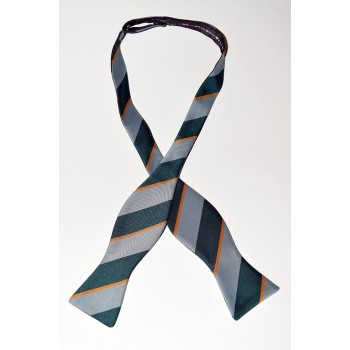 Cambridge '99 Rowing Club Summer Bow Tie