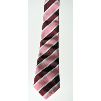 Trinity Hall Crescent Club Tie