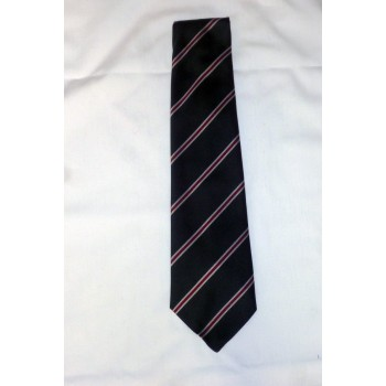 Girton College Striped Tie.