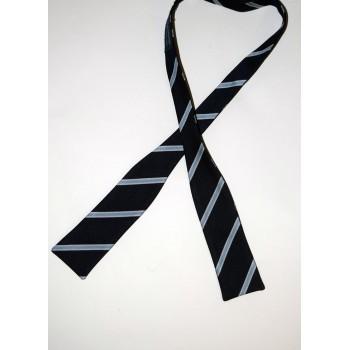 St. Edmund's College Batswing Bow Tie